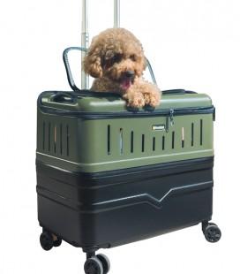 Pet Case